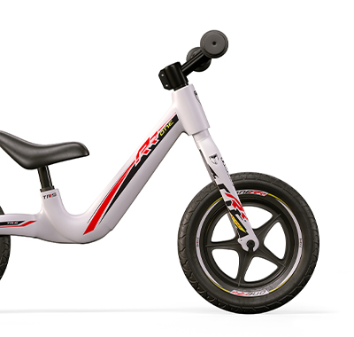 TRRS Electric Bike